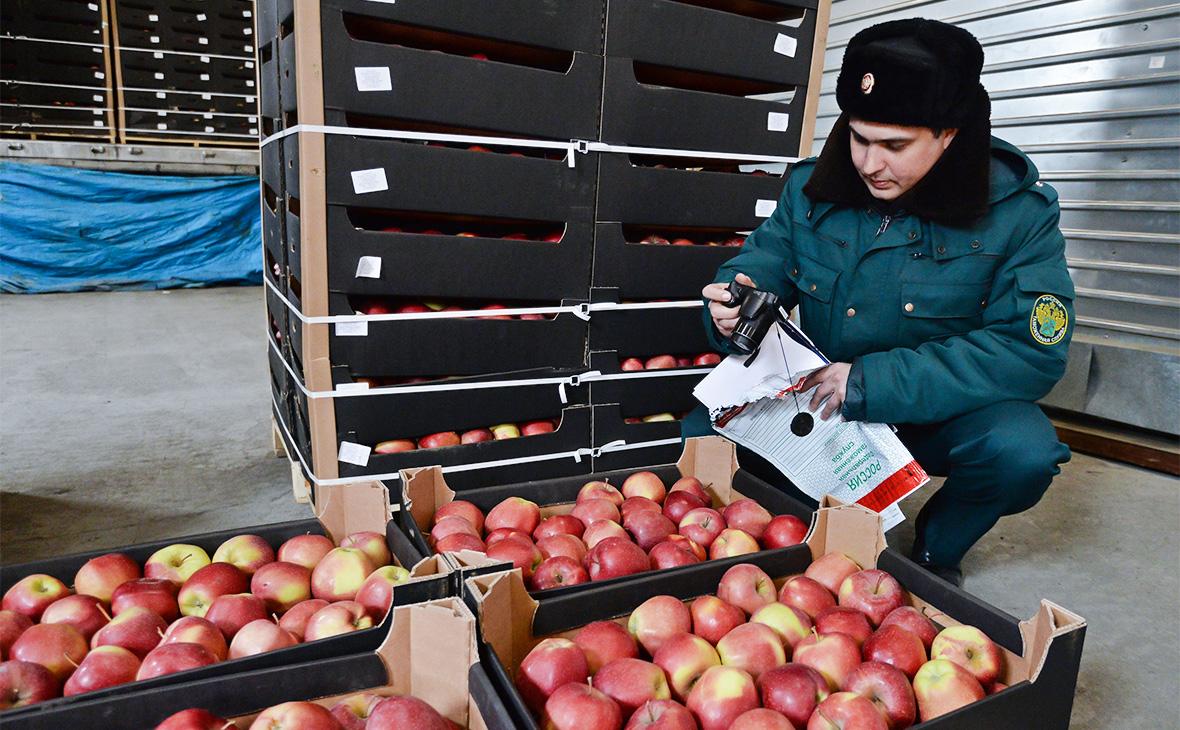 Россия хочет ввести ответственность транспортных компаний за ввоз санкционки 1