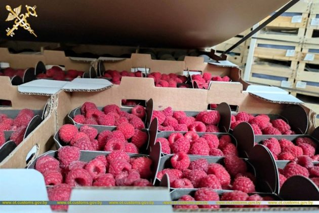 Белорусская таможня пресекла ввоз товара в Россию в грузовике-двойнике 1